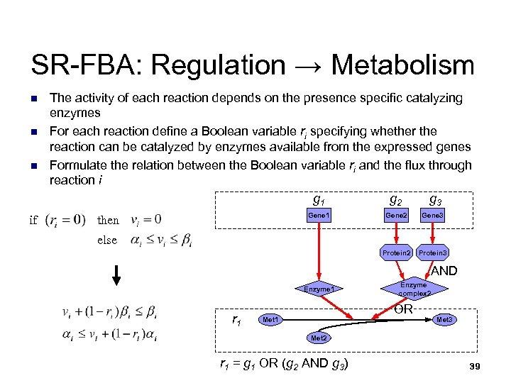 SR-FBA: Regulation → Metabolism n n n if The activity of each reaction depends