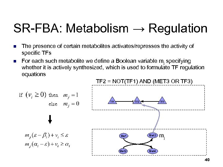 SR-FBA: Metabolism → Regulation n n The presence of certain metabolites activates/represses the activity