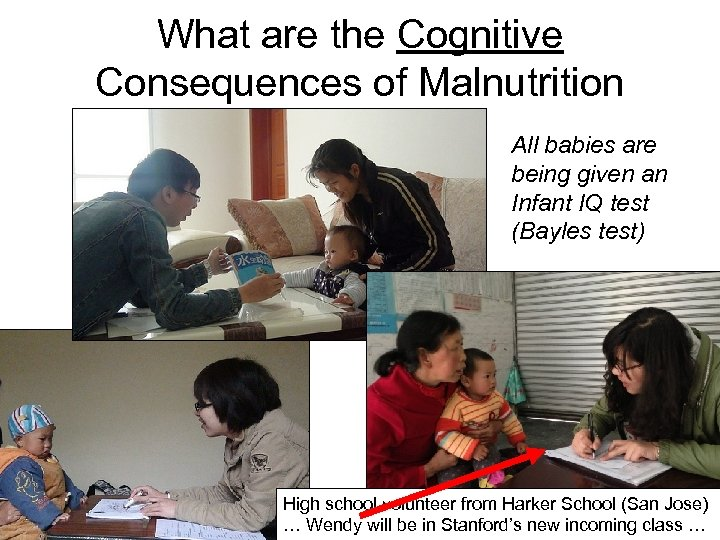 What are the Cognitive Consequences of Malnutrition All babies are being given an Infant
