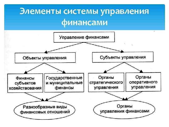 Элементы системы управления финансами