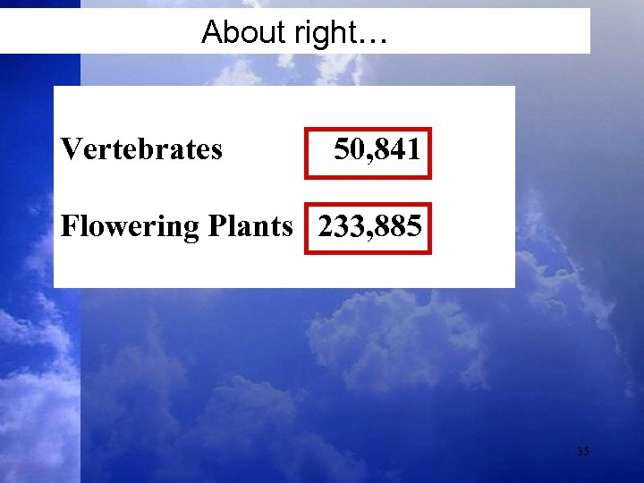 About right… Vertebrates 50, 841 Flowering Plants 233, 885 35