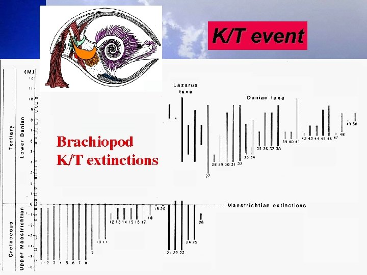 K/T event 47