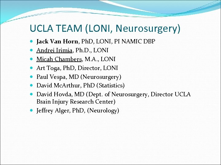 UCLA TEAM (LONI, Neurosurgery) Jack Van Horn, Ph. D, LONI, PI NAMIC DBP Andrei