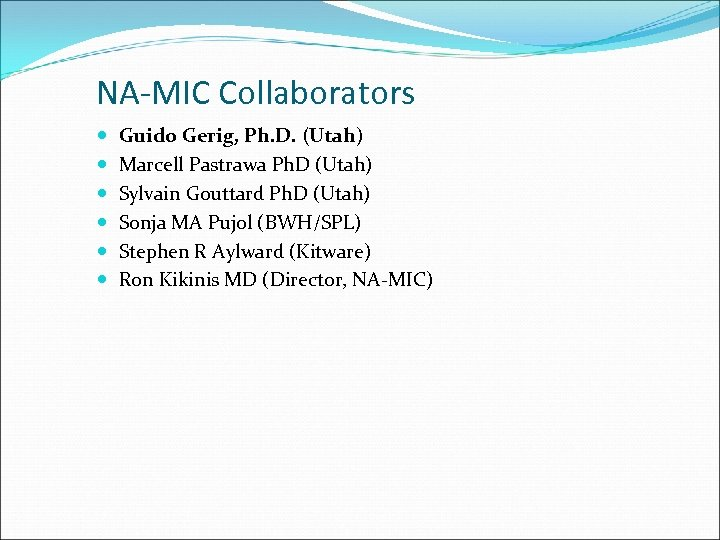 NA-MIC Collaborators Guido Gerig, Ph. D. (Utah) Marcell Pastrawa Ph. D (Utah) Sylvain Gouttard