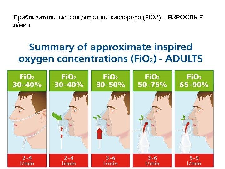 Приблизительные концентрации кислорода (Fi. O 2) - ВЗРОСЛЫЕ л/мин.
