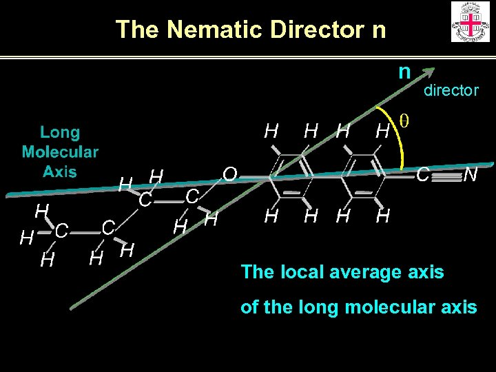 The Nematic Director n n director The local average axis of the long molecular
