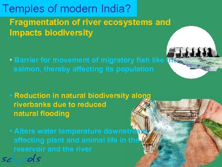 Temples of modern India? Fragmentation of river ecosystems and Impacts biodiversity • Barrier for