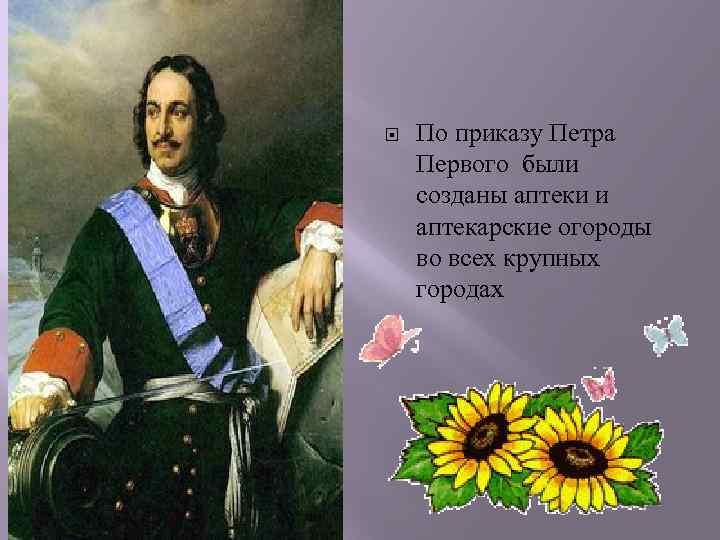 По приказу Петра Первого были созданы аптеки и аптекарские огороды во всех крупных