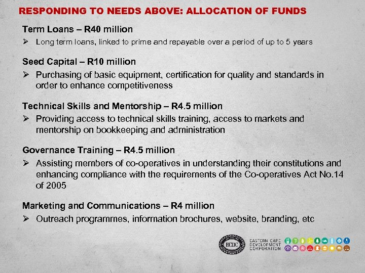 RESPONDING TO NEEDS ABOVE: ALLOCATION OF FUNDS Term Loans – R 40 million Ø