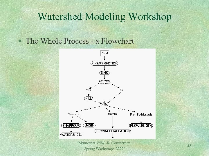 Watershed Modeling Workshop § The Whole Process - a Flowchart Minnesota GIS/LIS Consortium Spring