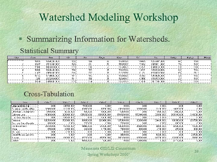 Watershed Modeling Workshop § Summarizing Information for Watersheds. Statistical Summary Cross-Tabulation Minnesota GIS/LIS Consortium