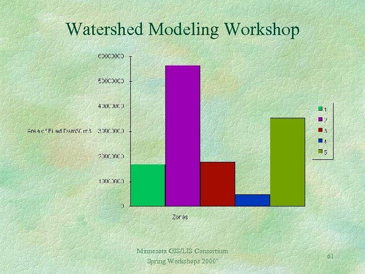 Watershed Modeling Workshop Minnesota GIS/LIS Consortium Spring Workshops 2000' 61