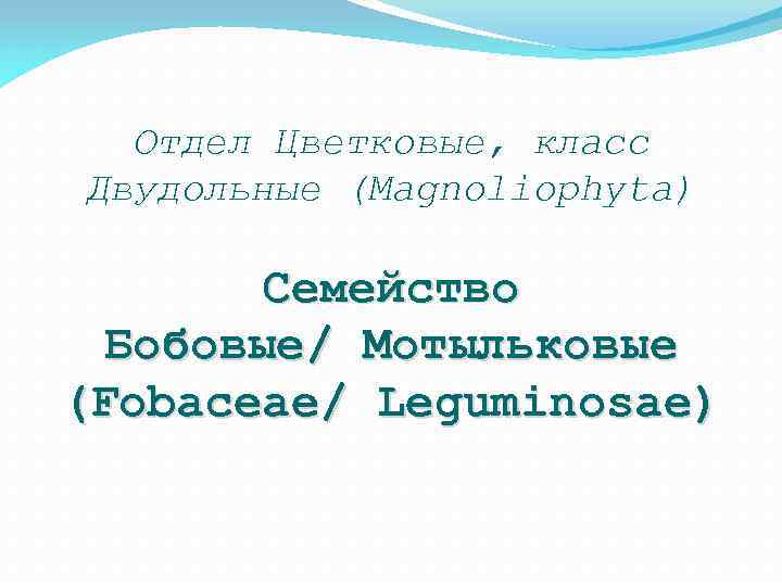 Отдел Цветковые, класс Двудольные (Magnoliophyta) Семейство Бобовые/ Мотыльковые (Fobaceae/ Leguminosae)
