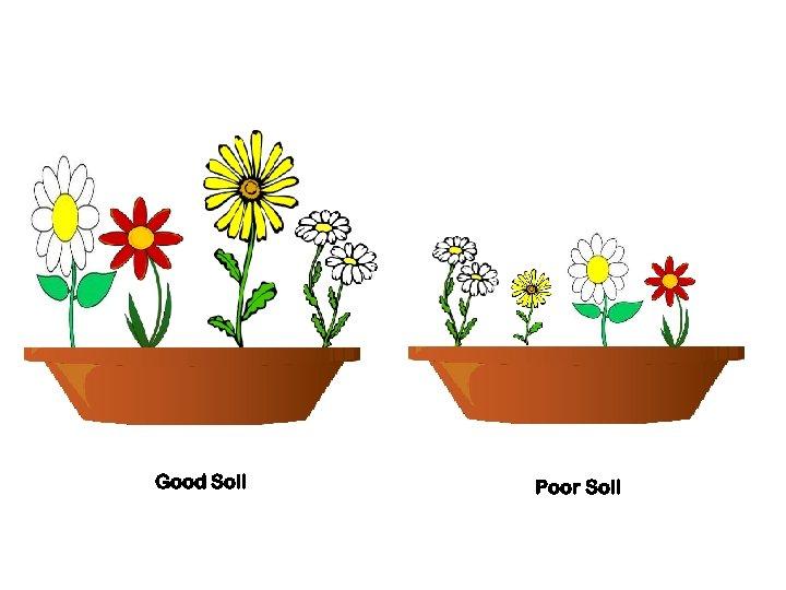 Good Soil Poor Soil