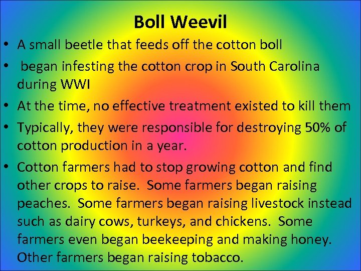 Boll Weevil • A small beetle that feeds off the cotton boll • began