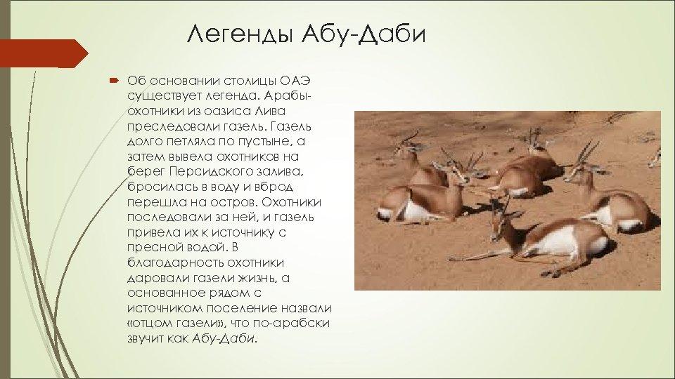 Легенды Абу-Даби Об основании столицы ОАЭ существует легенда. Арабыохотники из оазиса Лива преследовали газель.