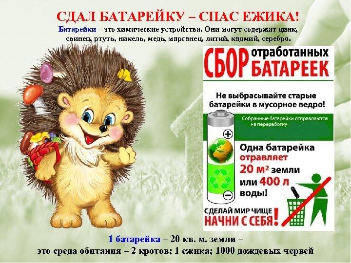 СДАЛ БАТАРЕЙКУ – СПАС ЕЖИКА! Батарейки – это химические устройства. Они могут содержат цинк,