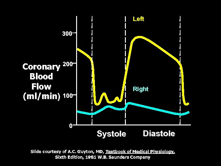 Left 300 Coronary 200 Blood Flow (ml/min) 100 0 Right Systole Diastole Slide courtesy