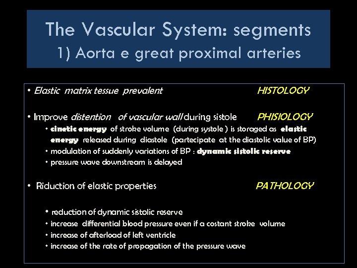 The Vascular System: segments 1) Aorta e great proximal arteries • Elastic matrix tessue