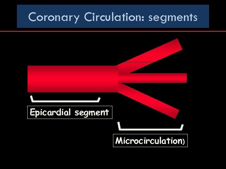Coronary Circulation: segments Epicardial segment Microcirculation)