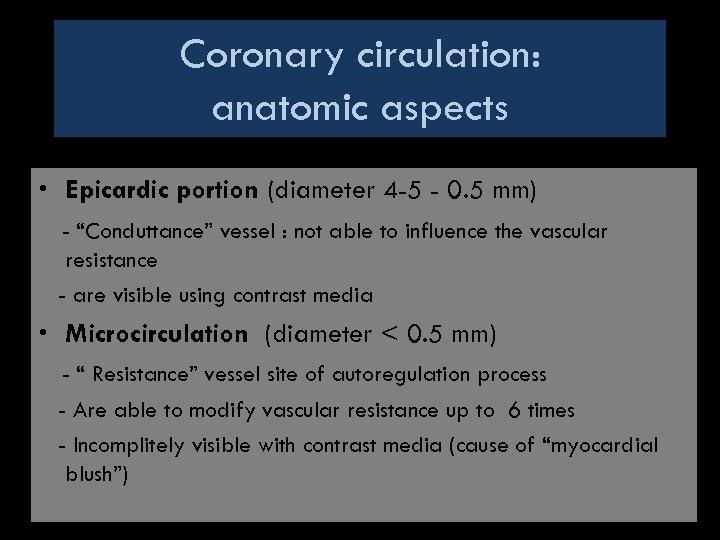 Coronary circulation: anatomic aspects • Epicardic portion (diameter 4 -5 - 0. 5 mm)