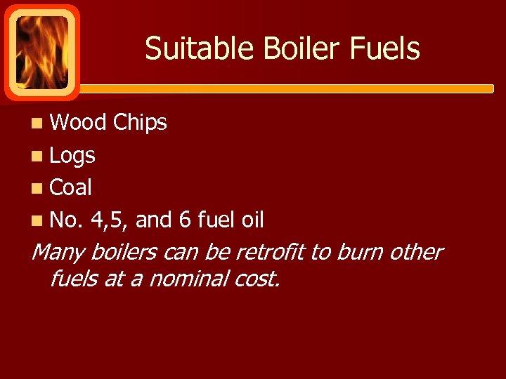 Suitable Boiler Fuels n Wood Chips n Logs n Coal n No. 4, 5,