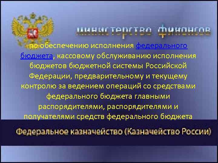 по обеспечению исполнения федерального бюджета, кассовому обслуживанию исполнения бюджетов бюджетной системы Российской Федерации, предварительному