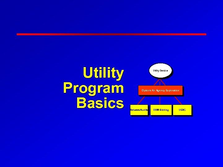 Utility Program Basics Utility Service Options for Agency Exploration Rebates/Audits DSM Bidding UESC