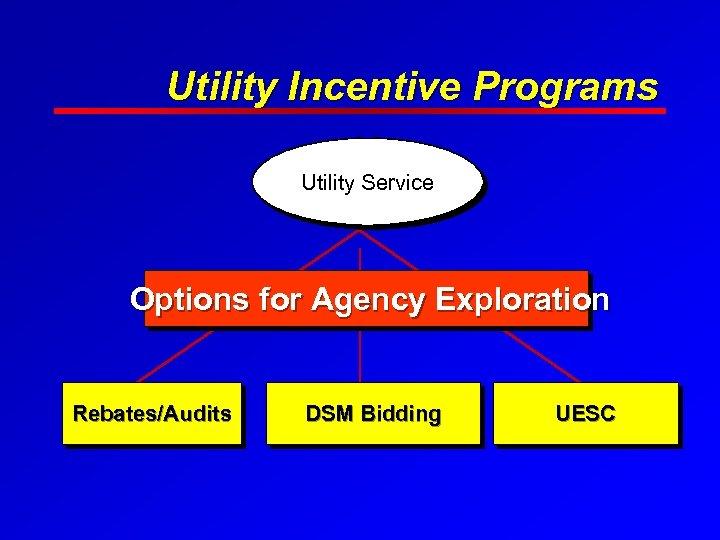Utility Incentive Programs Utility Service Options for Agency Exploration Rebates/Audits DSM Bidding UESC