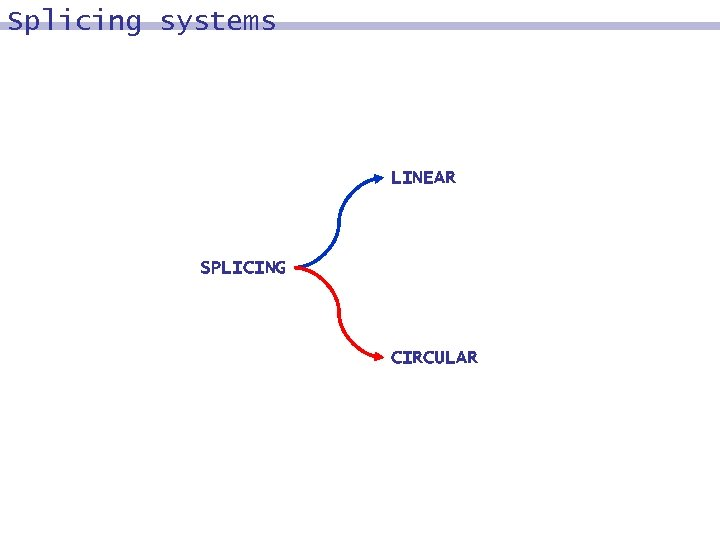 Splicing systems LINEAR SPLICING CIRCULAR
