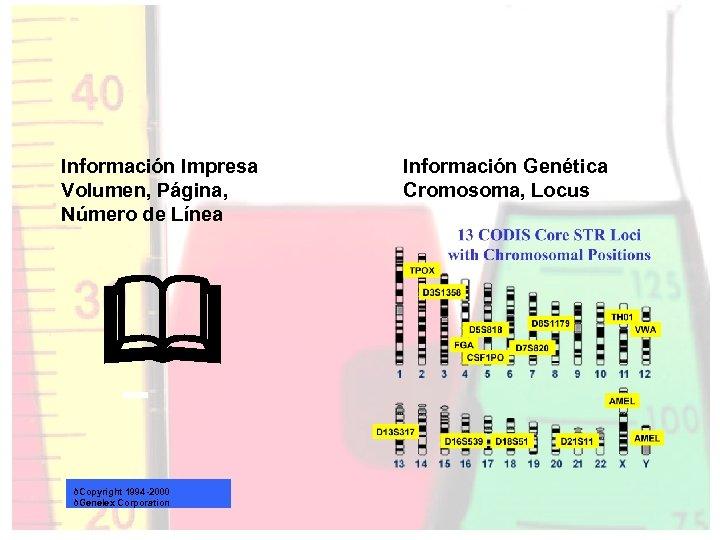 Información Impresa Volumen, Página, Número de Línea & ðCopyright 1994 -2000 ðGenelex Corporation Información