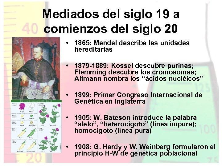Mediados del siglo 19 a comienzos del siglo 20 • 1865: Mendel describe las