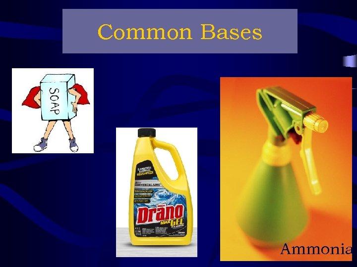Common Bases Ammonia