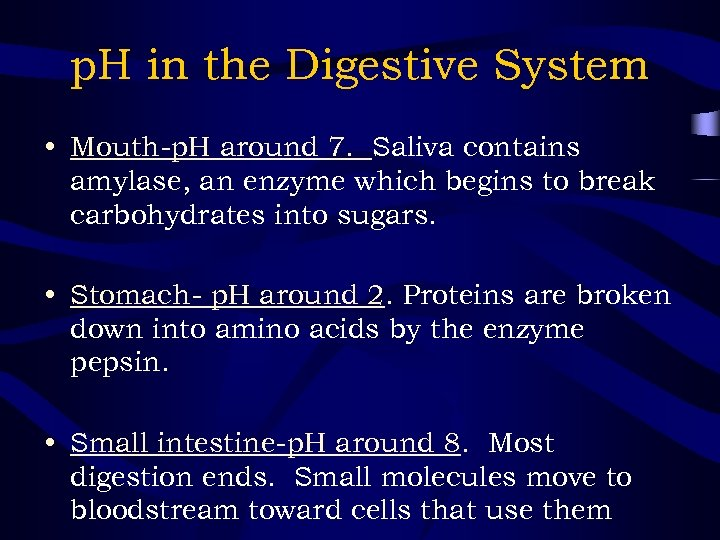 p. H in the Digestive System • Mouth-p. H around 7. Saliva contains amylase,