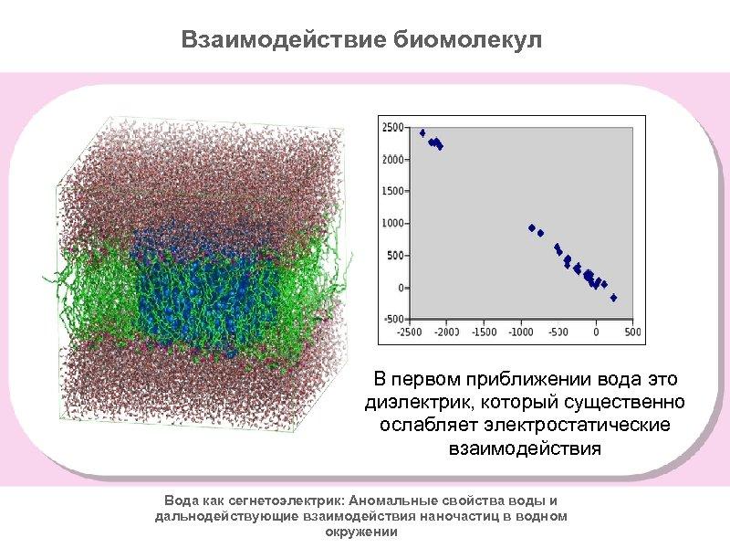 Взаимодействие биомолекул В первом приближении вода это диэлектрик, который существенно ослабляет электростатические взаимодействия Вода