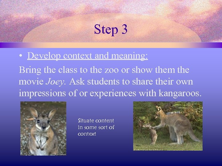 Step 3 • Develop context and meaning: Bring the class to the zoo or