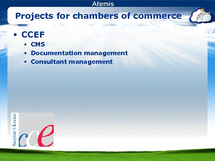 Projects for chambers of commerce § CCEF § CMS § Documentation management § Consultant