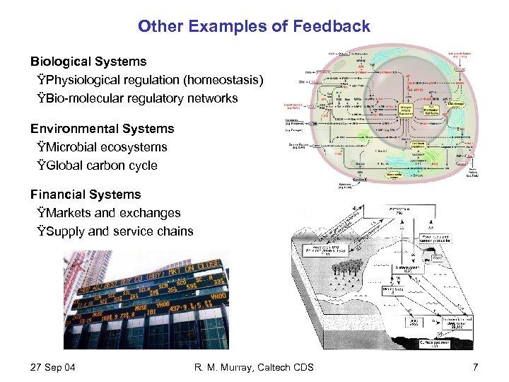 Other Examples of Feedback Biological Systems ŸPhysiological regulation (homeostasis) ŸBio-molecular regulatory networks Environmental Systems