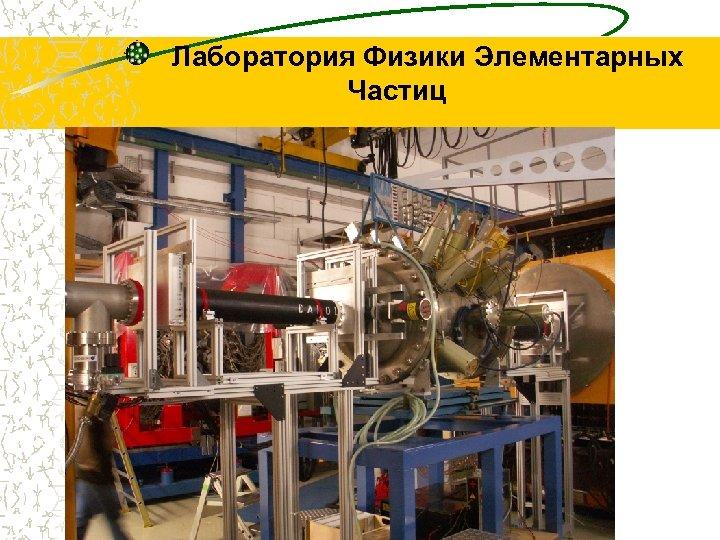 Лаборатория Физики Элементарных Частиц