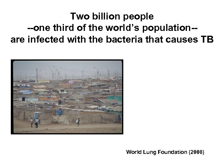 Two billion people --one third of the world's population-are infected with the bacteria that