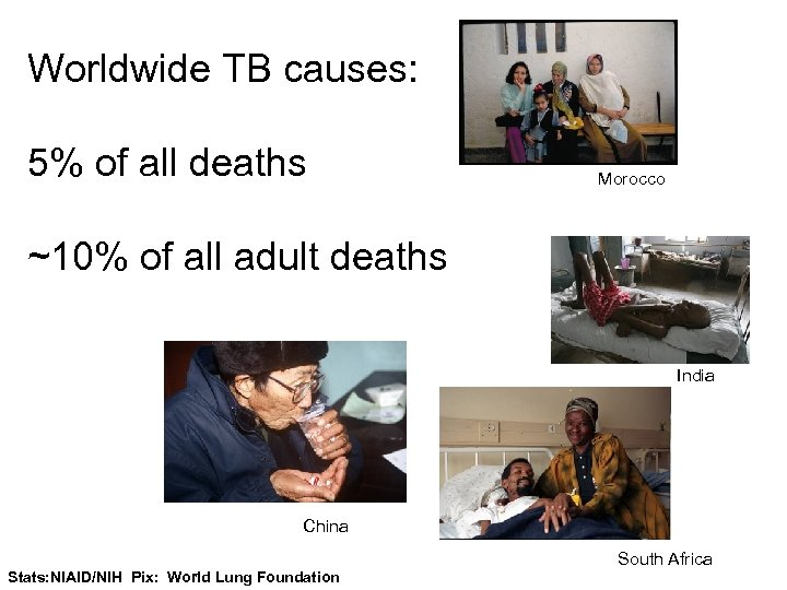 Worldwide TB causes: 5% of all deaths Morocco ~10% of all adult deaths India