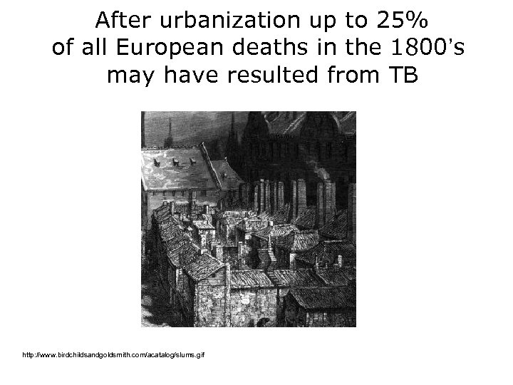 After urbanization up to 25% of all European deaths in the 1800's may have