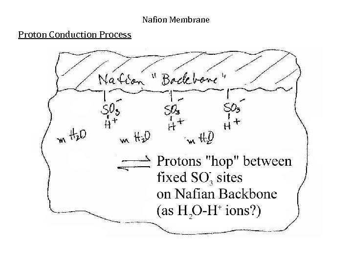Nafion Membrane Proton Conduction Process