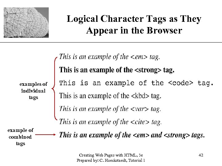 Logical Character Tags as They XP Appear in the Browser examples of individual tags