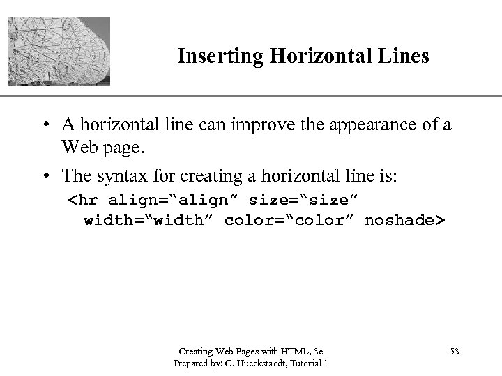 XP Inserting Horizontal Lines • A horizontal line can improve the appearance of a