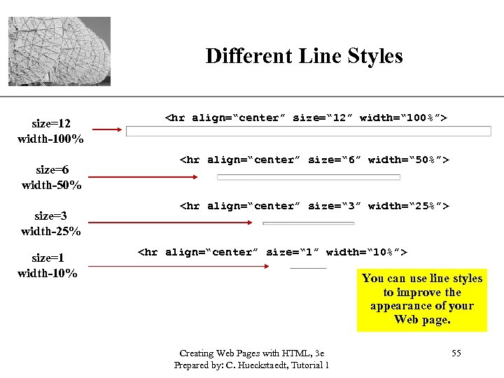 """Different Line Styles size=12 width-100% size=6 width-50% size=3 width-25% size=1 width-10% XP <hr align=""""center"""""""