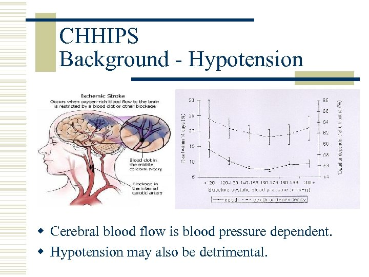 CHHIPS Background - Hypotension w Cerebral blood flow is blood pressure dependent. w Hypotension