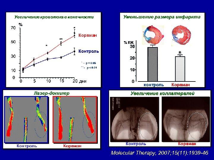 Molecular Therapy, 2007; 15(11): 1939 -46