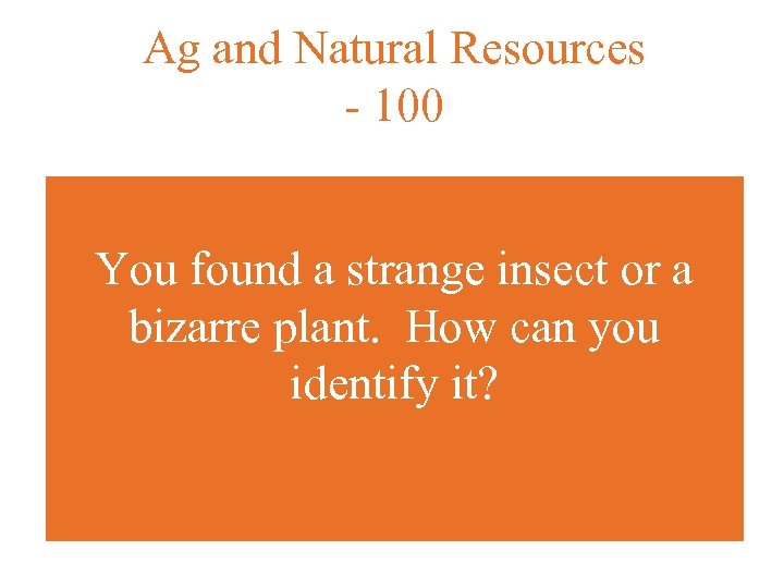 Ag and Natural Resources - 100 You found a strange insect or a bizarre
