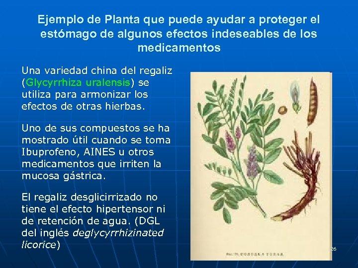 Ejemplo de Planta que puede ayudar a proteger el estómago de algunos efectos indeseables
